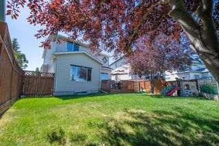 Photo 45: 164 CHAPARRAL Common SE in Calgary: Chaparral Detached for sale : MLS®# A1031677