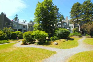 "Photo 20: 369 8025 CHAMPLAIN Crescent in Vancouver: Champlain Heights Condo for sale in ""CHAMPLAIN RIDGE"" (Vancouver East)  : MLS®# R2402571"