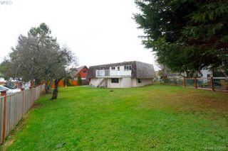 Photo 38: 1813 Rossiter Place in VICTORIA: SE Lambrick Park Single Family Detached for sale (Saanich East)  : MLS®# 419655