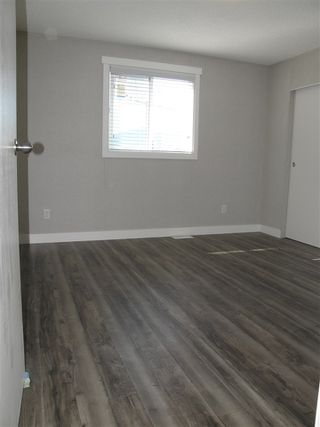 Photo 7: 12 62780 FLOOD HOPE Road in Hope: Hope Center Manufactured Home for sale : MLS®# R2492306