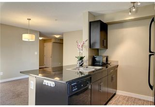 Photo 8: 119 7130 80 Avenue NE in Calgary: Saddle Ridge Apartment for sale : MLS®# A1043063
