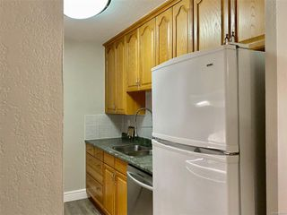 Photo 3: 302 904 Hillside Ave in : Vi Hillside Condo for sale (Victoria)  : MLS®# 860603