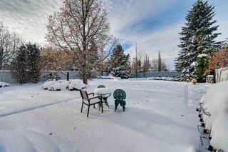 Photo 33: 320 CARMICHAEL Wynd in Edmonton: Zone 14 House for sale : MLS®# E4224689