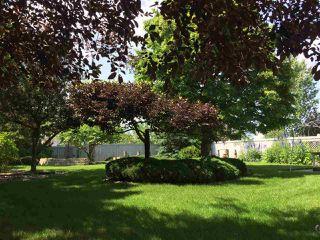 Photo 38: 320 CARMICHAEL Wynd in Edmonton: Zone 14 House for sale : MLS®# E4224689