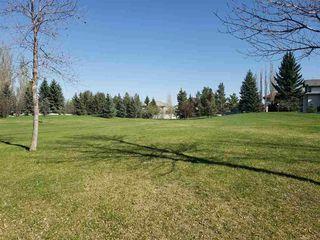 Photo 43: 320 CARMICHAEL Wynd in Edmonton: Zone 14 House for sale : MLS®# E4224689