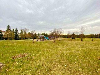 Photo 44: 320 CARMICHAEL Wynd in Edmonton: Zone 14 House for sale : MLS®# E4224689