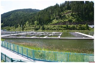 Photo 55: 16 1130 Riverside AVE in Sicamous: Waterfront House for sale : MLS®# 10039741
