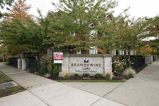 Photo 19: 19 6188 BIRCH STREET in Richmond: Home for sale : MLS®# R2111731