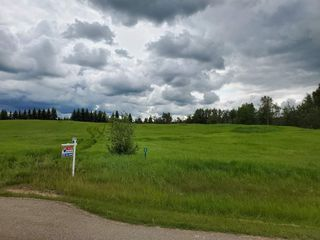 Photo 7: 5-51222 RGE RD 260: Rural Parkland County Rural Land/Vacant Lot for sale : MLS®# E4194616