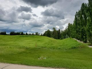 Photo 14: 5-51222 RGE RD 260: Rural Parkland County Rural Land/Vacant Lot for sale : MLS®# E4194616