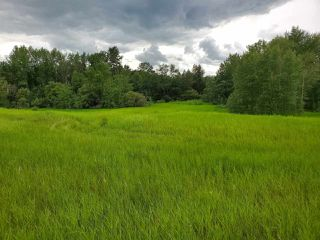 Photo 12: 5-51222 RGE RD 260: Rural Parkland County Rural Land/Vacant Lot for sale : MLS®# E4194616