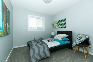 Photo 15: : Leduc House for sale : MLS®# E4198062