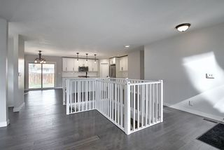 Photo 20: 25 STIRLING Road in Edmonton: Zone 27 House for sale : MLS®# E4215828