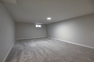 Photo 33: 25 STIRLING Road in Edmonton: Zone 27 House for sale : MLS®# E4215828