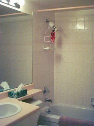Photo 6: V537503: House for sale (Maillardville)  : MLS®# V537503