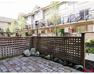"Photo 8: 24 5388 201A Street in Langley: Langley City Townhouse for sale in ""THE COURTYARD"" : MLS®# F2812450"