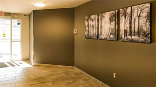 Photo 12: 429 25 Bridgeland Drive North in Winnipeg: Bridgwater Forest Condominium for sale (1R)  : MLS®# 1925688