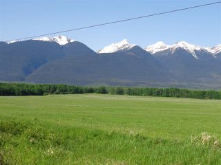 Photo 7: 3205 CRESCENT LAKE Road in McBride: McBride - Rural West House for sale (Robson Valley (Zone 81))  : MLS®# R2480685