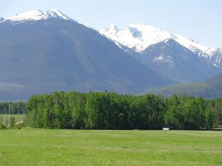 Photo 11: 3205 CRESCENT LAKE Road in McBride: McBride - Rural West House for sale (Robson Valley (Zone 81))  : MLS®# R2480685