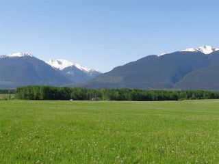 Photo 1: 3205 CRESCENT LAKE Road in McBride: McBride - Rural West House for sale (Robson Valley (Zone 81))  : MLS®# R2480685