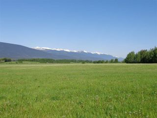 Photo 9: 3205 CRESCENT LAKE Road in McBride: McBride - Rural West House for sale (Robson Valley (Zone 81))  : MLS®# R2480685