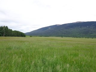 Photo 15: 3205 CRESCENT LAKE Road in McBride: McBride - Rural West House for sale (Robson Valley (Zone 81))  : MLS®# R2480685