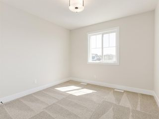 Photo 41: 159 CANOE Crescent SW: Airdrie Detached for sale : MLS®# A1019943