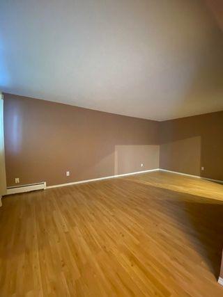 Photo 10: 104 10320 113 Street in Edmonton: Zone 12 Condo for sale : MLS®# E4188107