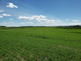 Photo 4: W: 5 R: 4 T: 24 S: 22 Q: Northeast: Land for sale (Rural Rocky View County)  : MLS®# C4293551