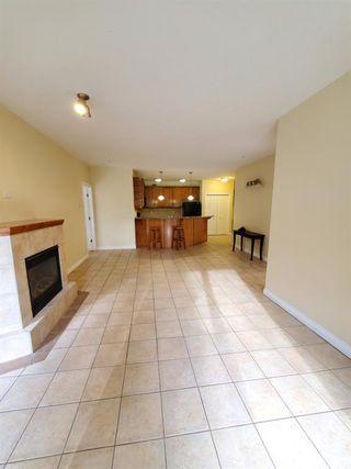 Photo 9: 7107 14 HEMLOCK Crescent SW in Calgary: Spruce Cliff Apartment for sale : MLS®# C4302638
