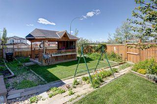 Photo 25: 10 TARALEA Bay NE in Calgary: Taradale Semi Detached for sale : MLS®# A1013270