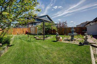 Photo 24: 10 TARALEA Bay NE in Calgary: Taradale Semi Detached for sale : MLS®# A1013270