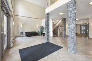 Photo 7: 405 10121 80 Avenue in Edmonton: Zone 17 Condo for sale : MLS®# E4166080
