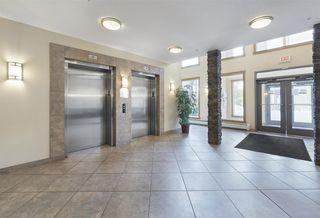 Photo 6: 405 10121 80 Avenue in Edmonton: Zone 17 Condo for sale : MLS®# E4166080