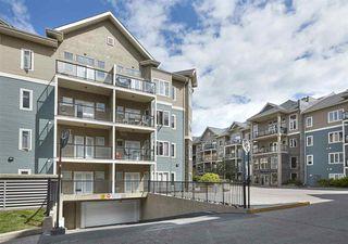 Photo 28: 405 10121 80 Avenue in Edmonton: Zone 17 Condo for sale : MLS®# E4166080