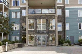 Photo 5: 405 10121 80 Avenue in Edmonton: Zone 17 Condo for sale : MLS®# E4166080