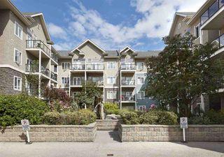 Photo 30: 405 10121 80 Avenue in Edmonton: Zone 17 Condo for sale : MLS®# E4166080
