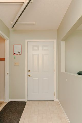 Photo 7: 11903 66 Street NW in Edmonton: Zone 06 House for sale : MLS®# E4166519