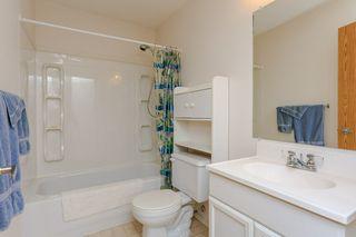 Photo 23: 11903 66 Street NW in Edmonton: Zone 06 House for sale : MLS®# E4166519