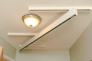 Photo 6: 11903 66 Street NW in Edmonton: Zone 06 House for sale : MLS®# E4166519