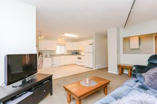 Photo 11: 11903 66 Street NW in Edmonton: Zone 06 House for sale : MLS®# E4166519