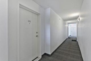 Photo 31: 405 10030 83 Avenue in Edmonton: Zone 15 Condo for sale : MLS®# E4205494