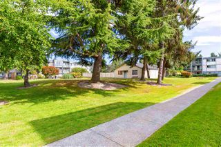 Photo 9: 102 3391 SPRINGFIELD DRIVE in Richmond: Steveston North Condo for sale : MLS®# R2481877