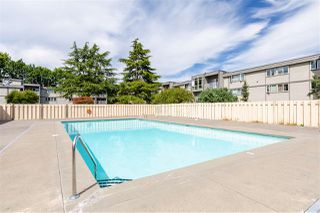 Photo 10: 102 3391 SPRINGFIELD DRIVE in Richmond: Steveston North Condo for sale : MLS®# R2481877