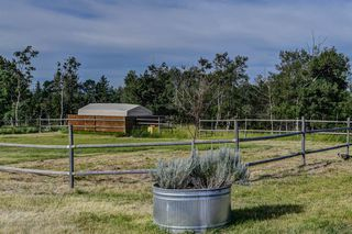 Photo 49: 248060 184 Street W: Rural Foothills County Detached for sale : MLS®# A1025485