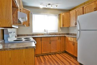 Photo 13: 3643 Dover Ridge Drive SE in Calgary: Dover Detached for sale : MLS®# A1039368