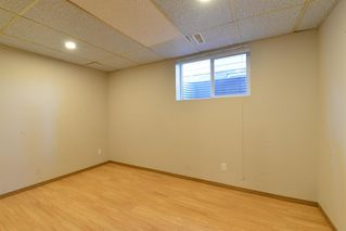 Photo 25: 3643 Dover Ridge Drive SE in Calgary: Dover Detached for sale : MLS®# A1039368