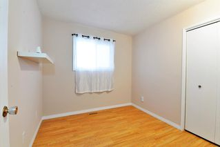 Photo 9: 3643 Dover Ridge Drive SE in Calgary: Dover Detached for sale : MLS®# A1039368