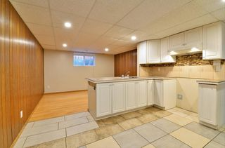 Photo 17: 3643 Dover Ridge Drive SE in Calgary: Dover Detached for sale : MLS®# A1039368