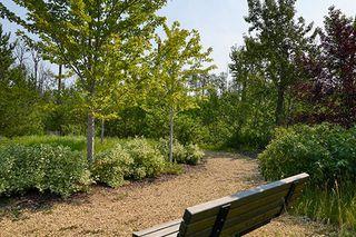 Photo 25: 532 Suncrest Link: Sherwood Park House for sale : MLS®# E4218587